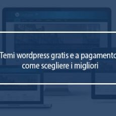 temi wordpress gratis pay